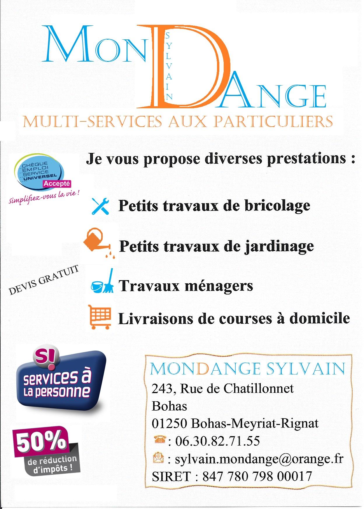 Mondange Sylvain Multi-services à Bourg en Bresse